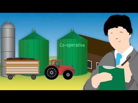 Sustainability of biofuels (short version)