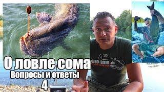 О ловле сома. Вопросы и ответы 4. Рыбалка на сома, оснастка, способы ловли.
