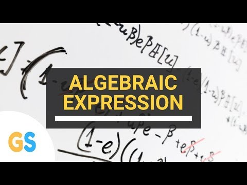 Class 8 Mathematics - Algebraic Expression and Identities