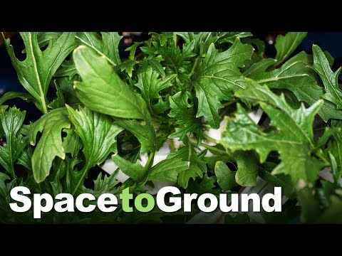 Space to Ground: Farm-to-Table: 07/12/2019