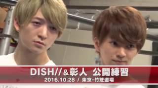 10月28日、「DDTフェス2016 supported」(新木場STUDIO COAST/11月6日開...