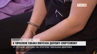 В Тирасполе собака покусала девушку-спортсменку