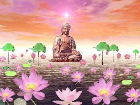 Niệm Phật Kinh Hành - Thầy Thích Trí Thoát
