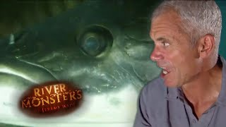 Jeremy Wade Attacked By An Arapaima - River Monsters