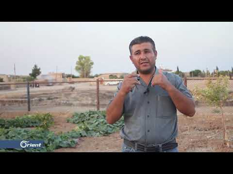 خسائر اقتصادية كبيرة جراء حرائق المحاصيل الزراعية في الحسكة  - 21:53-2019 / 8 / 9