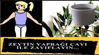 Zeytin Yaprağı Çayının Zayıflamaya Etkisi