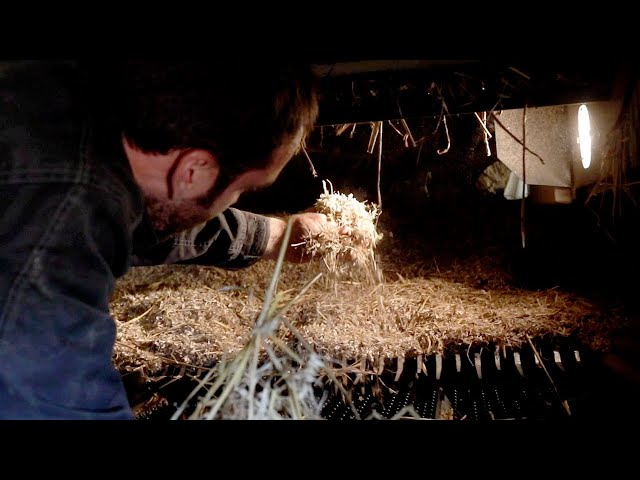Xtreme testing - UK  | John Deere DE