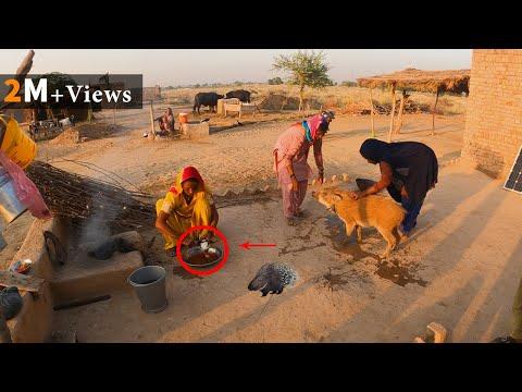 Unseen Hindu Community of Pakistan || Bhoi or Bauri tribes food & Culture