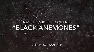 Rachel Mikol - Black Anemones