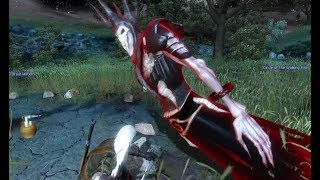 The Wild Hunt in The Witcher 1 (Hunting The Wild Hunt)