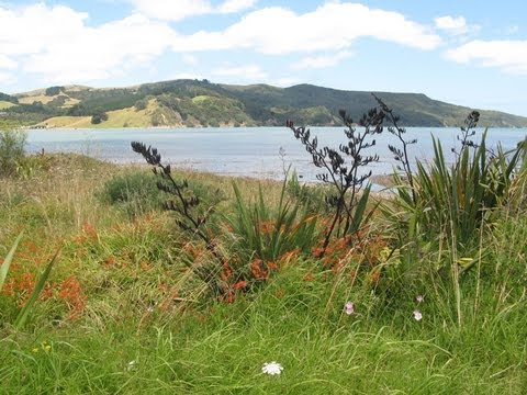 Our Holidays - New Zealand North island