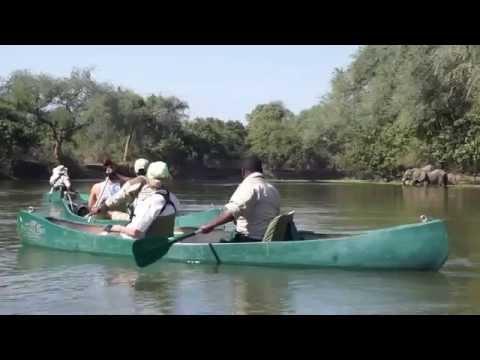 Bushtracks Expeditions