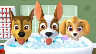 PAW Patrol: A Day in Adventure Bay - Chase, Skye All Pups Learn Daily Routine,Wash Hands Brush Teeth