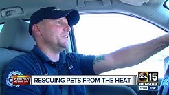 Arizona Humane Society busy with calls as they rescue pets from heat across the Valley