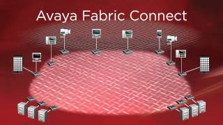 Avaya Fabric Connect español