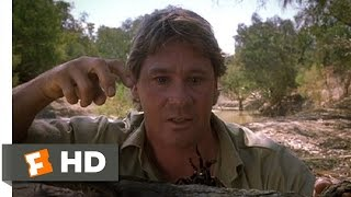 The Crocodile Hunter: Collision Course (5/10) Movie CLIP - Steve Flirts With a Spider (2002) HD