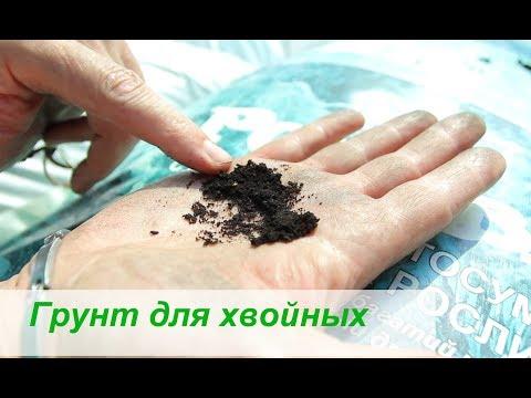 Грунт для хвойных растений своими руками
