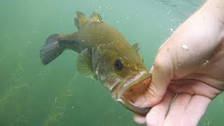 Clearest Water I've Ever Fished! MTB Bass Fishing Tournament