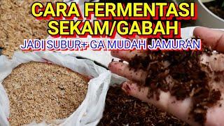 Download lagu CARA FERMENTASI SEKAM PADI SUPER MUDAH. MEDIA TANAM JADI SUBUR