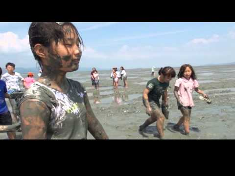 [Korean Culture] Mudflats a Beautiful Ocean Field Created by Humans and Nature EN