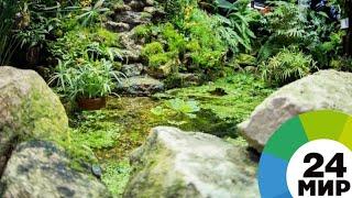 Армен Саргсян подарил принцу Чарльзу сад в Армении - МИР 24