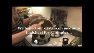 How To Make Savory Oyster Stew