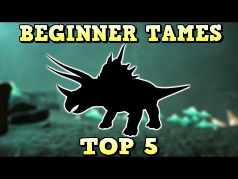 TOP 5 BEGINNER TAMES | ARK SURVIVAL EVOLVED