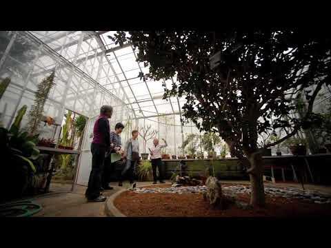 Wellesley College greenhouses