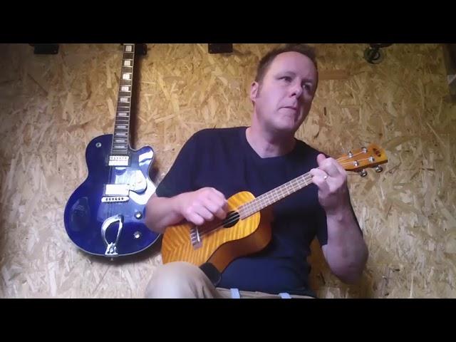 News - I am now offering Skype lessons on ukulele.