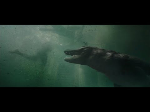 映画『クロール ―凶暴領域―』予告編 サム・ライミ製作のディザスター・パニック・ホラー!ハリケーンで洪水に見舞われたフロリダで巨大ワニの恐怖が襲いかかる!『メイズ・ランナー』のカヤ・スコデラリオ主演