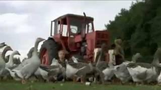 Extra3 Classix Folge 6 Heimattreue deutsche Jugend 18.7.2010