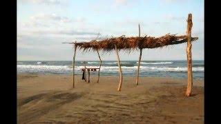 Sauvons notre paradis: la plage de piemanson