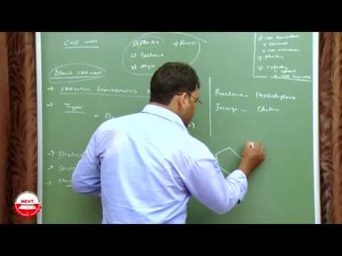 Class 9 Biology- Fundamental Unit of Life- Cell,Cellular Transport System