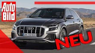 Audi SQ8 (2019): Neuvorstellung - Sport - SUV