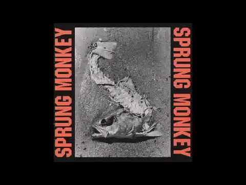 Sprung Monkey - No Solution