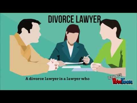 Types of Lawyers & Their Roles