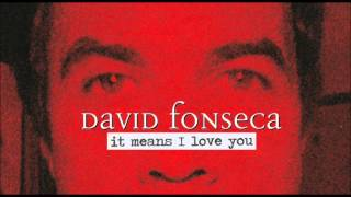 Watch David Fonseca It Means I Love You video