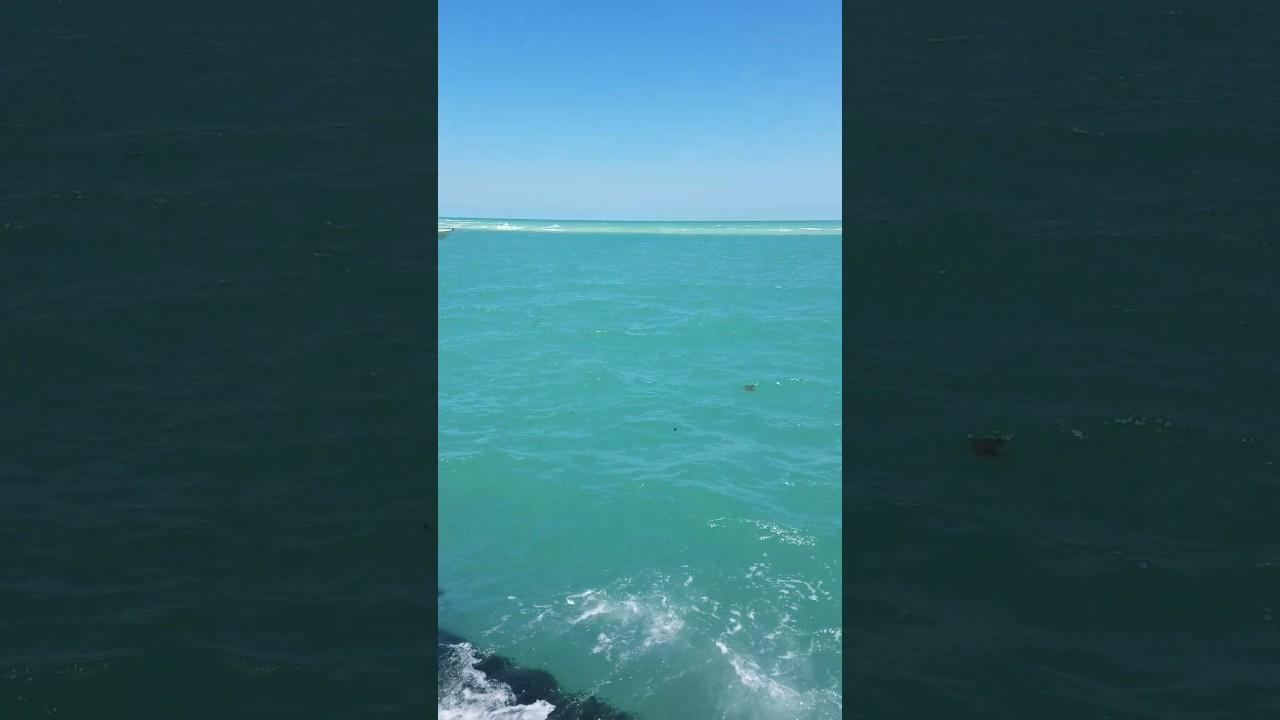 Vista De La Playa Siesta Key Florida