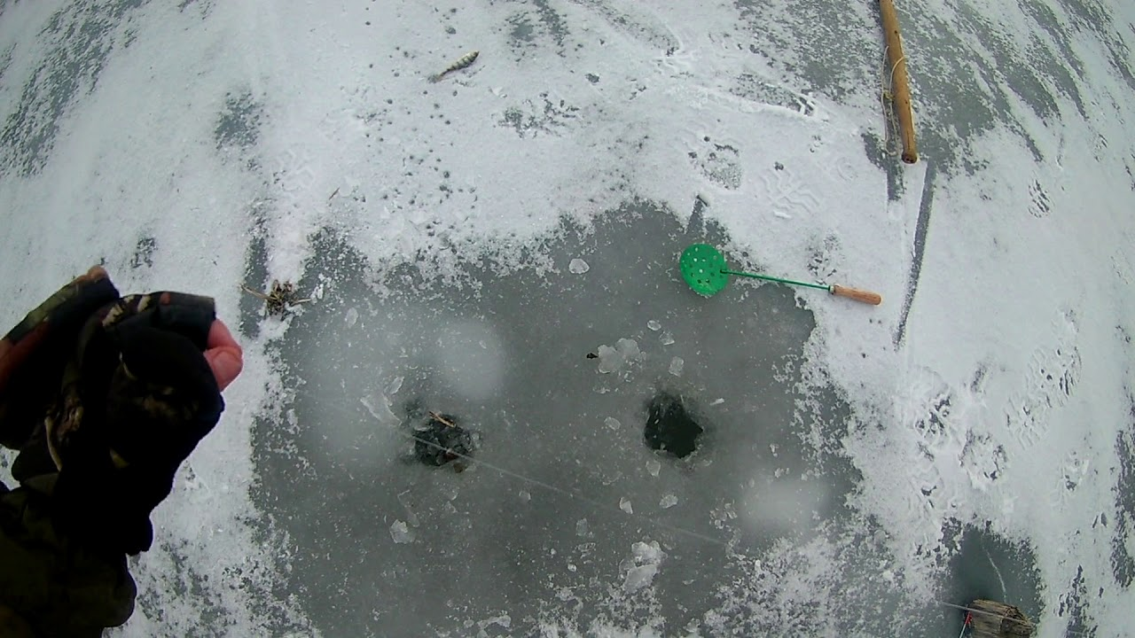 Как поймать тюльку зимой