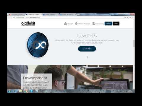OODLEBIT EXCHANGE - торговый криптообмен с низкой комиссией в США, на основе блокчейн