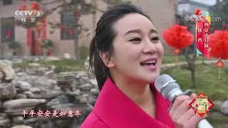 [2020东西南北贺新春]《岁岁好年》 演唱:韩冰 陈燕妮  CCTV综艺