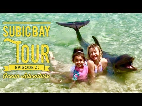 Subic Bay Tour Episode 3: Ocean Adventure Full Walking Tour Dolphin Beach Encounter Shows