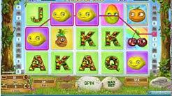 Fruity Friends Online Video Slot BIG WIN!!!