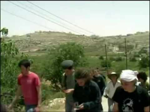Examiner mostra vídeo de dois OVNIs na Palestina