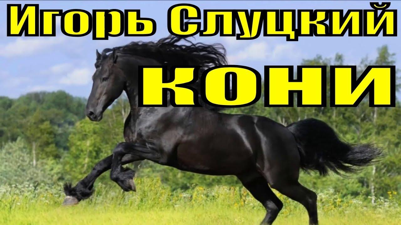 Песня Кони Игорь Слуцкий песни шансон лучшее хиты для души