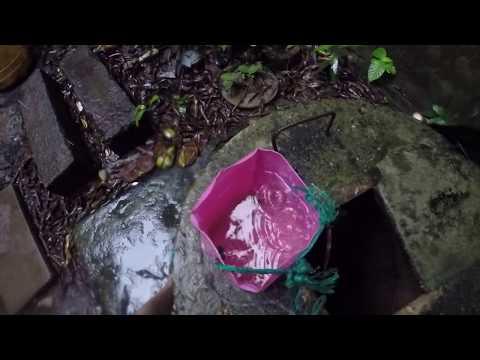 "The Bluefields Nicaragua Water Crisis!! KO NEWS SERIES ""Water is Sacred"" Ep. 5"