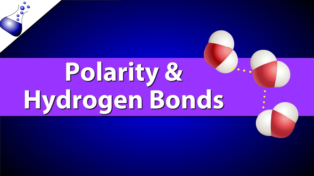 Polar Bonds and Hydrogen Bonds