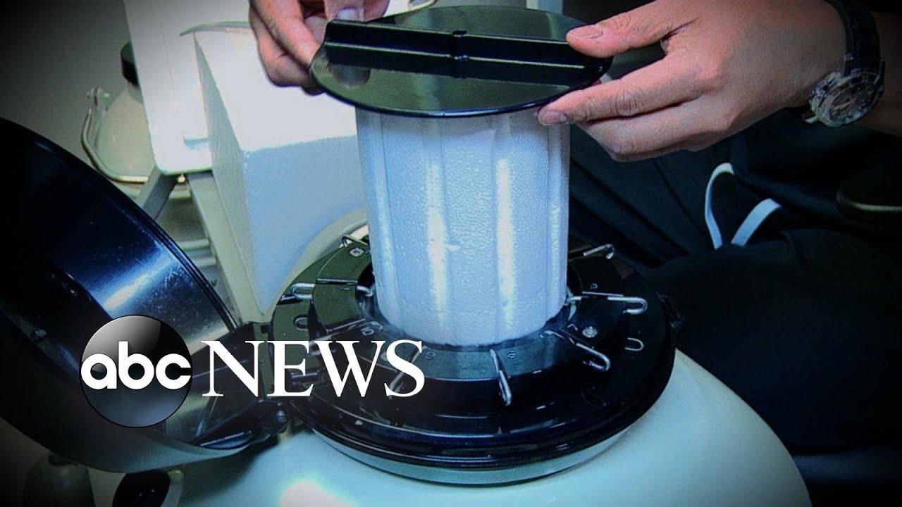 Woman sues hospital over frozen embryo storage   GMA