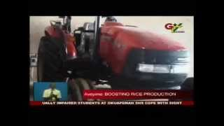 Ghana's local rice production increases