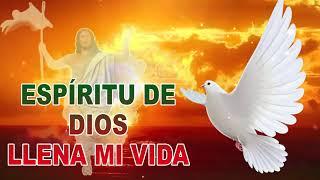 ESPÍRITU DE DIOS LLENA MI VIDA - EESPECIAL DE 90 MINUSTOS DE ALABANZAS PARA ALIMENTAR EL ALMA